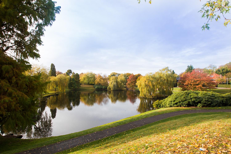 Foto van park in Hilversum door fotograaf Juri Hiensch